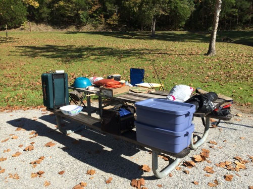 county-fair-campground-picnic-table-ant-infestation